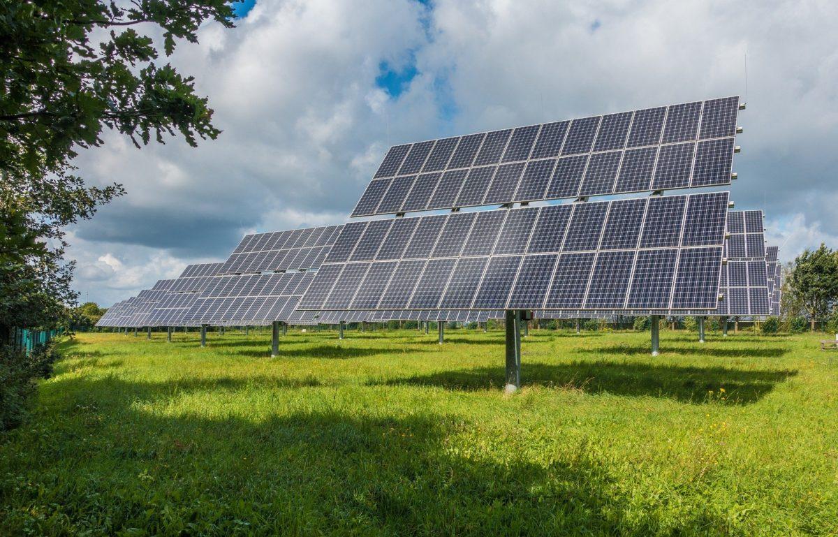 LC besteedt aandacht aan werkzaamheden GroenLeven omtrent zonneweide Zwette