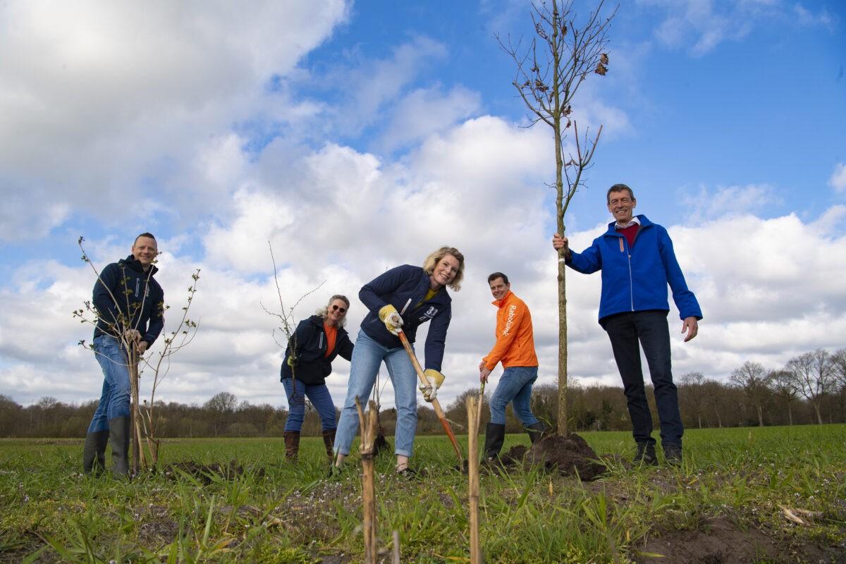 Friese Rabobanken planten boom voor elke nieuwe hypotheek