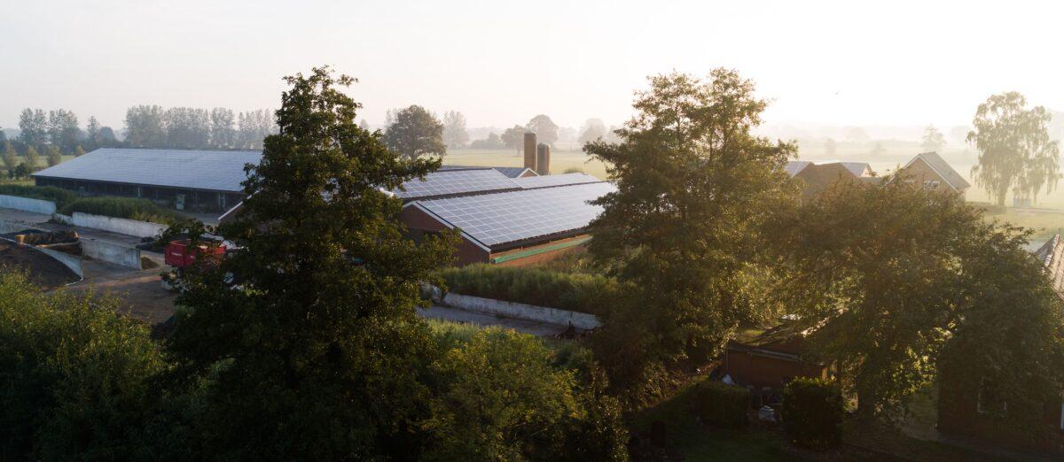 Samenwerking GroenLeven, Univé en Rabobank in Duurzame Zekerheid lost meerdere maatschappelijke problemen op